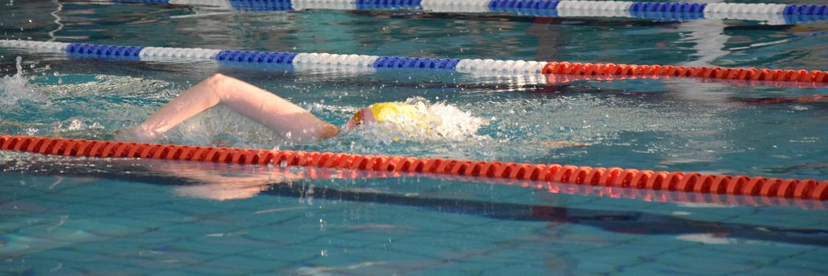 header-zwemster
